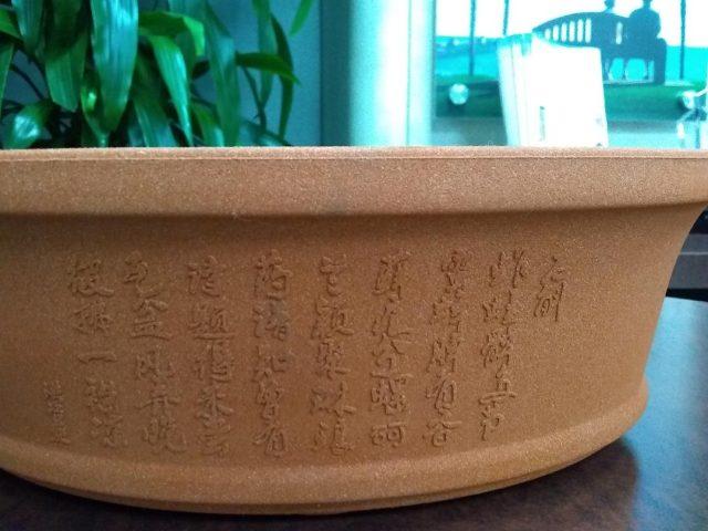 Oval Shape Pot